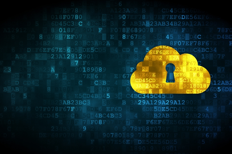 Security in the cloud is a major risk for business data.
